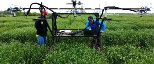 Apogee Infrared Radiometer being used for phenotyping
