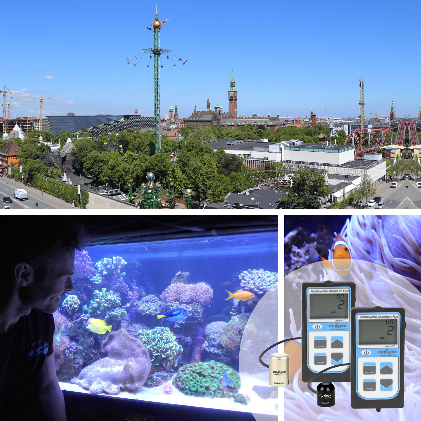 Using Apogee underwater quantum meters to measure light levels in the Tivoli Gardens aquarium exhibition.