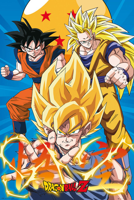 Dragonball Z - Goku Evolution Mounted Wall Hanger Picture