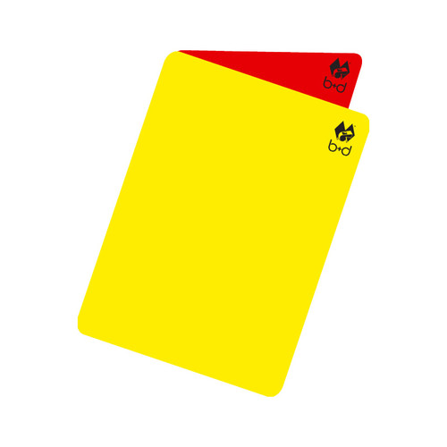The Flip Card