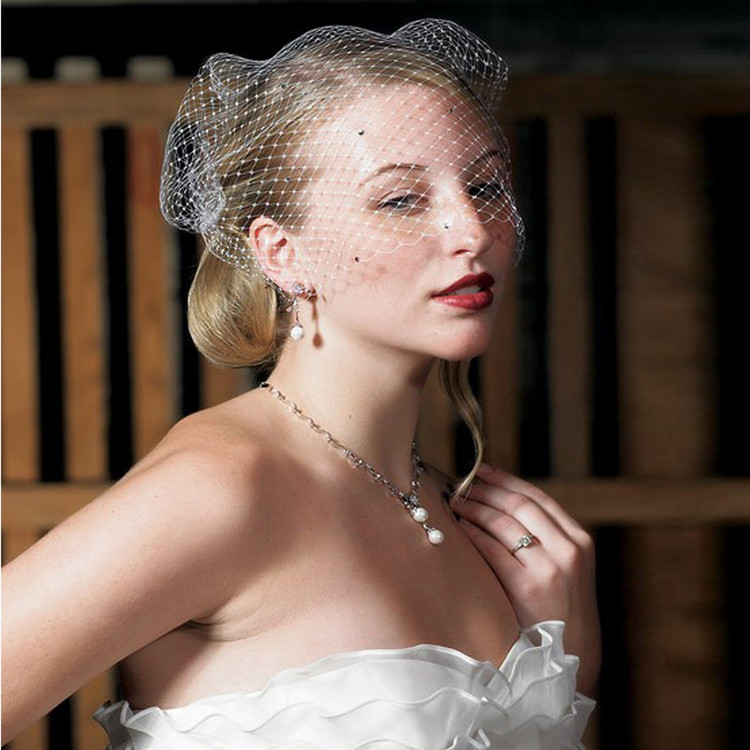 Vintage Bird Cage Style Veil Ivory