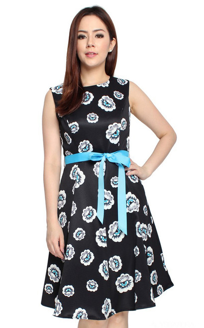 Printed Flare Dres