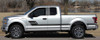 profile Ford Truck Decals and Sticker ELIMINATOR bedside stripes 3M | FCD Call Us 812-725-1410