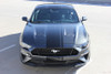 EURO RALLY | 2018 Ford Mustang Center Vinyl Graphic Stripe 3M FCD Call 812-725-1410