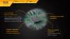 Fenix TK15 Ultimate Edt. LED Flashlight Chip