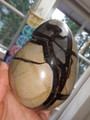 Great Display Piece! Large Septarian Dragon Egg With Caves