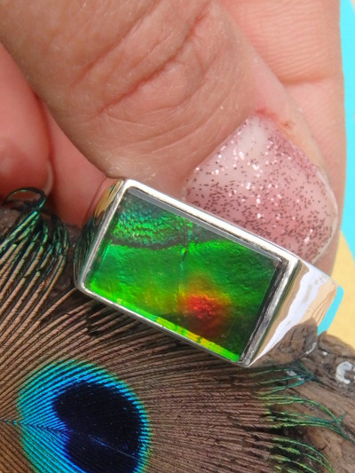 High Flash Canadian Ammolite Ring In Sterling Silver (Size 12)