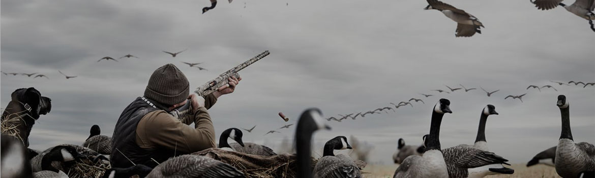 Waterfowl Season is Here
