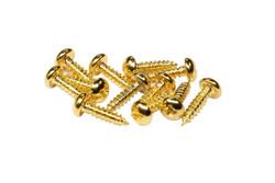 "#2 x 5/16"" Gold truss rod cover screws"