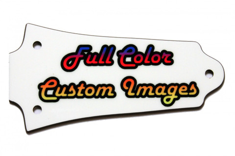 Full Color Older Epiphone Les Paul truss rod cover