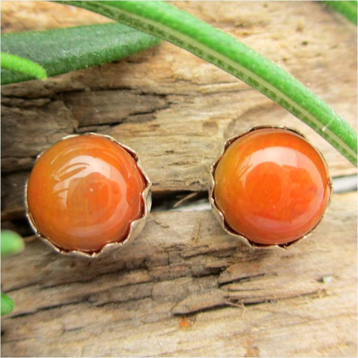 Arizona Rainbow Petrified Wood Cabochon Stud Earrings,  Lighter