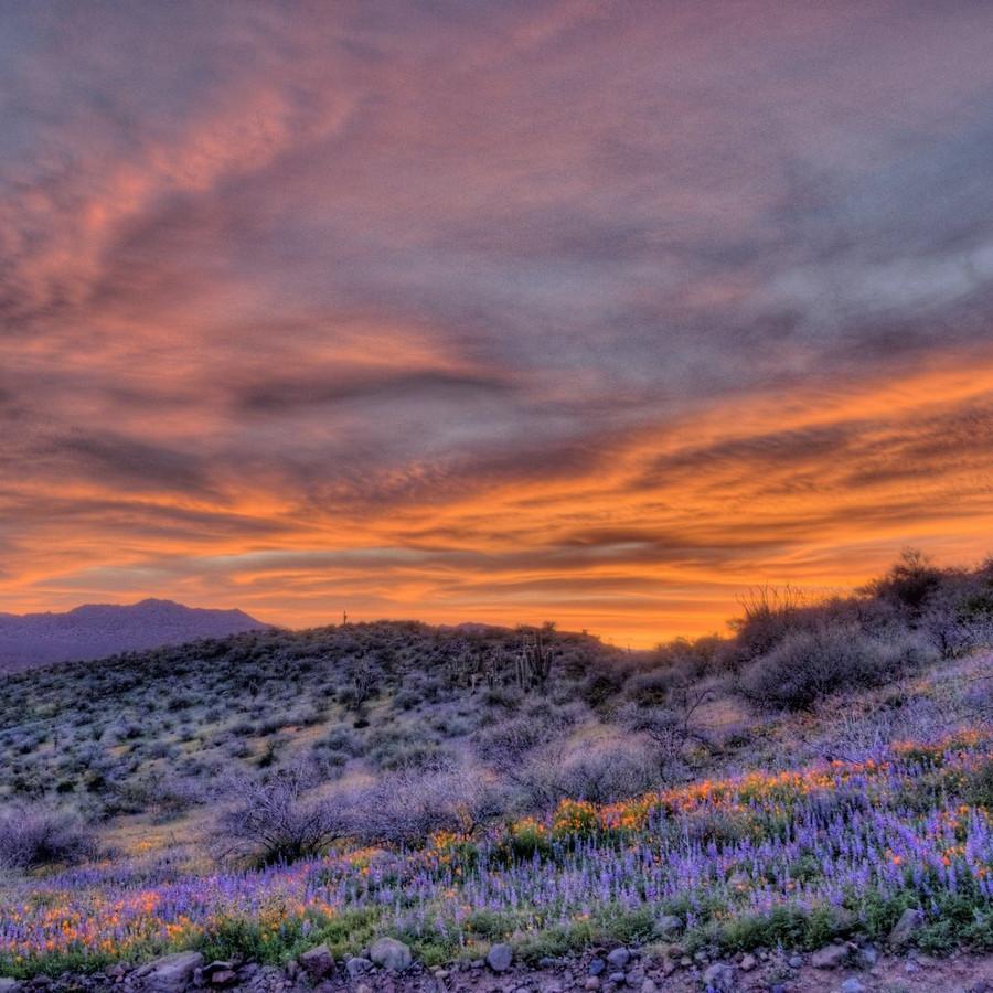 San Carlos peridot country at sunset.