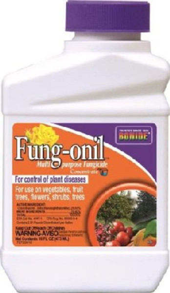 Bonide, Fungonil 880 Concentrate Fungicide, 1 Pt