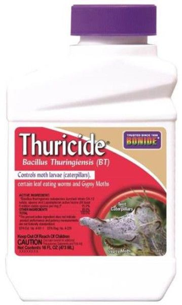 Bonide, Thuricide Concentrate 16 Oz