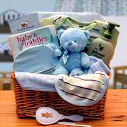 Organic New Baby Basics Gift Baskets - Blue