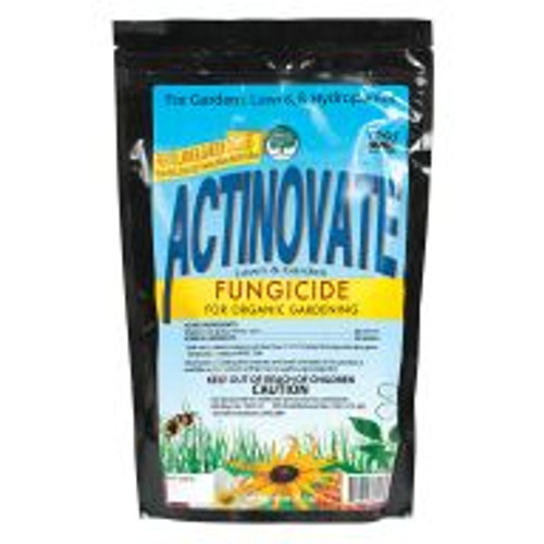 Actinovate biological fungicide uses the beneficial bacteria Streptomyces lydicus to control soil-borne diseases, including pythium and fusarium, as well as foliar diseases such as powdery mildew. Gardeners using Actinovate as a soil drench can promote healthy root development and improve overall plant strength in addition to combating soil pathogens as the spores germinate and colonize the root zone. Actinovate is 100% soluble and can also be used as a foliar spray.