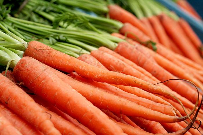 Organic Scarlet Nantes Carrots