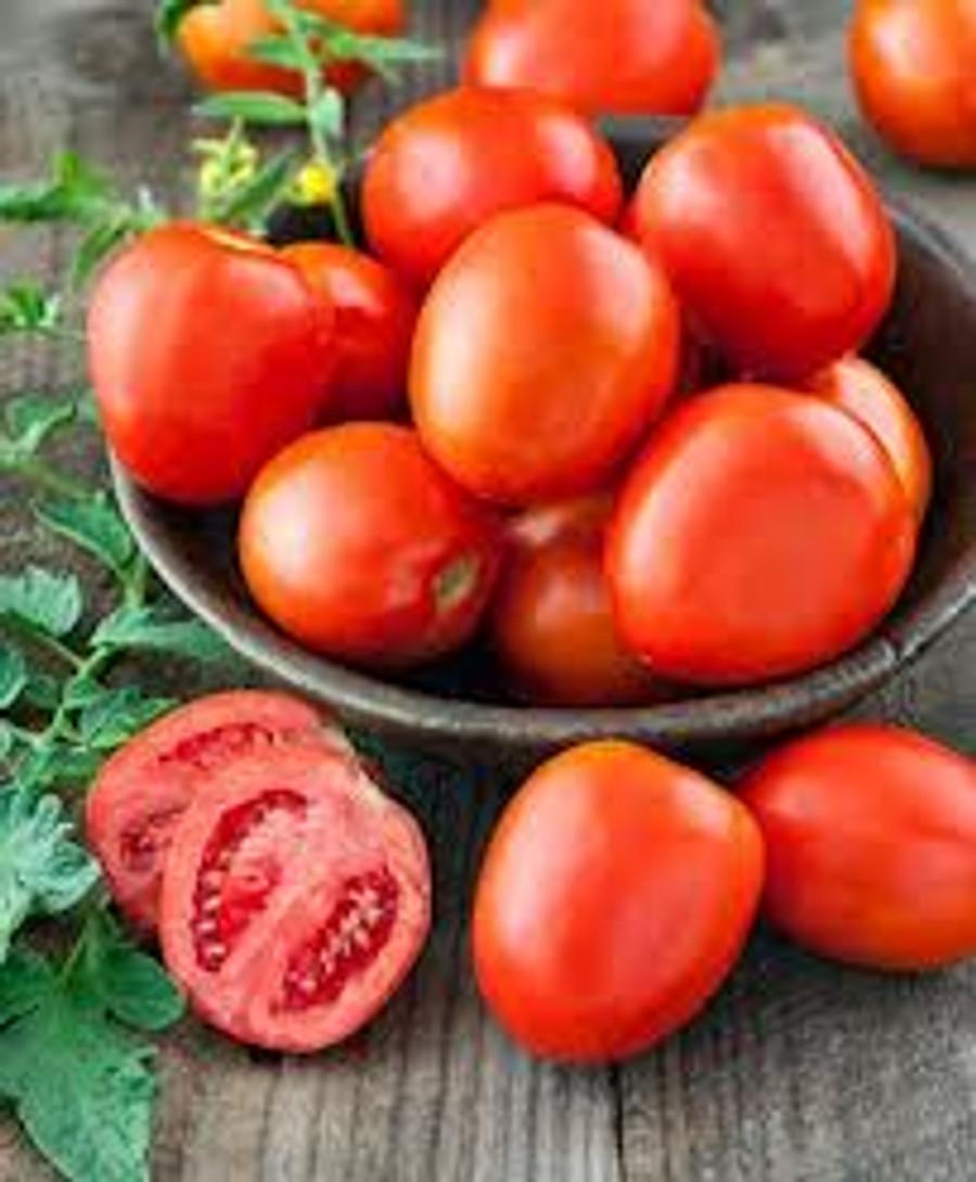 Tomato - Roma OG