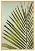 King Palm Art