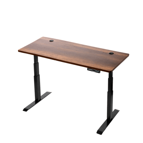 Wood Finish Sit Stand Desk