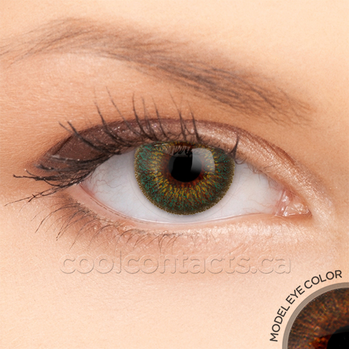 colors-7085-brown.jpg