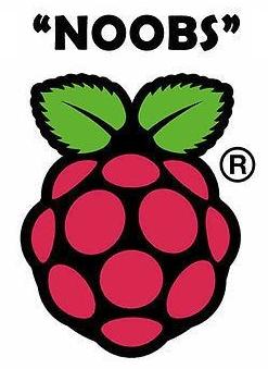 noobs-logo.jpg