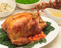 turkey-reduced.png
