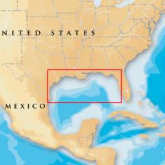 Navionics Platinum+ - Gulf Of Mexico - microSD/SD [MSD/907P+]