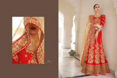 Beautiful Designer Saree147