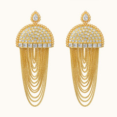 Stunning Gold Plated Earrings1868