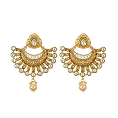 Stunning Gold Plated Earrings1884
