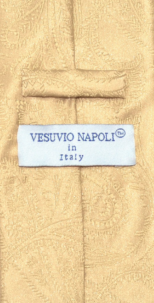 Vesuvio Napoli Gold Color PAISLEY NeckTie & Handkerchief Matching Neck Tie Set