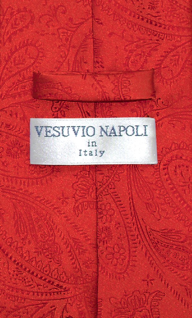 Vesuvio Napoli NeckTie RED Color Paisley Design Men's Neck Tie