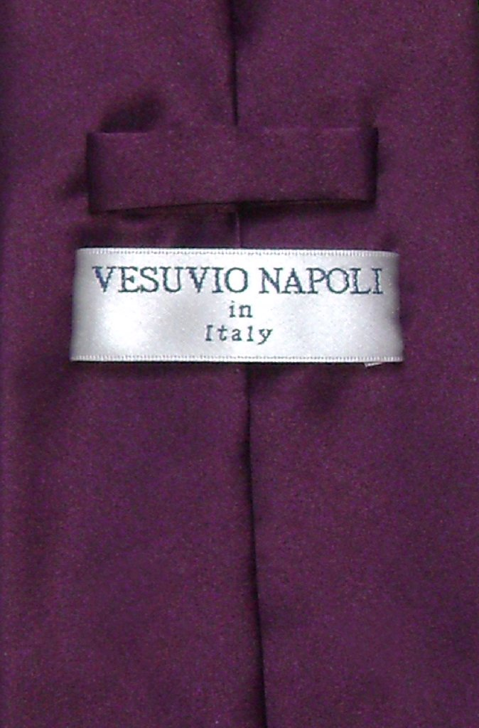 Vesuvio Napoli NeckTie Solid EGGPLANT PURPLE Color Men's Neck Tie
