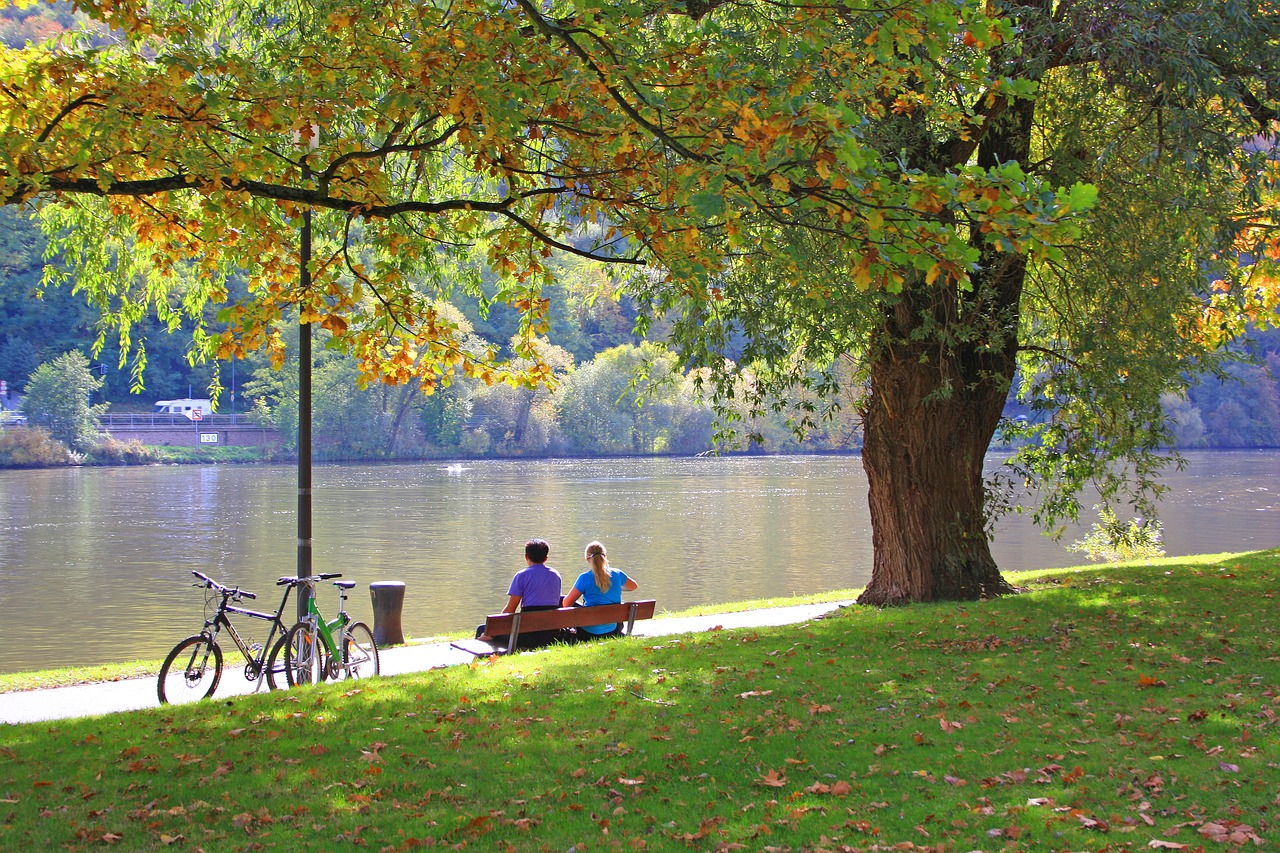 a couple on bikes stop along the river to sit on a bench and enjoy the day under a tree
