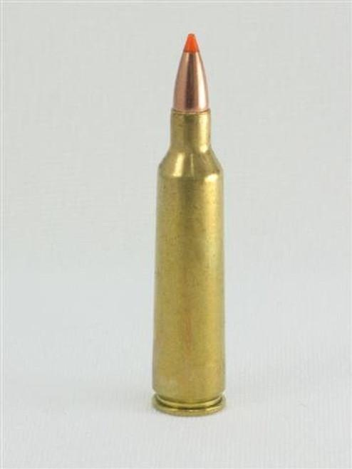 .22-250 Remington 55gr Ballistic Tip