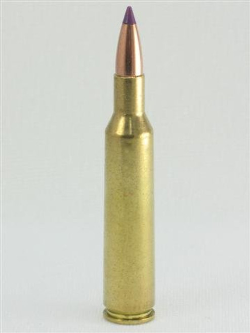 6MM Remington 95gr Ballistic Tip