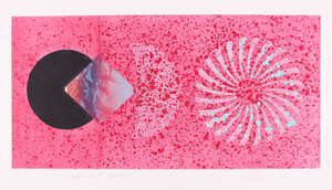THE BOOK DISAPPEARS FOR THE FAST STUDENT BY JAMES ROSENQUIST