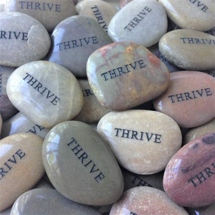 Award Winning Thrive Stones