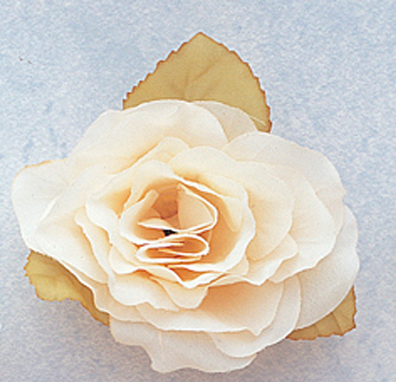 3 ivory dry single rose silk flowers with plastic base pack of 12 3 ivory dry single rose silk flowers with plastic base pack of 12 pieces mightylinksfo