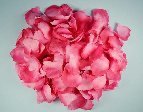 Wedding silk flower petals fuchsia wedding silk rose flower petals 12 packs mightylinksfo