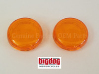 Front Turn Signal Lenses (2003-04) PAIR
