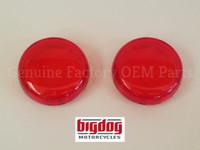 Rear Turn Signal Lenses (2003-04) PAIR