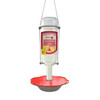 NEW! Sweet-Feeder™ Hummingbird Feeder (With a FREE bottle of Nectar!)
