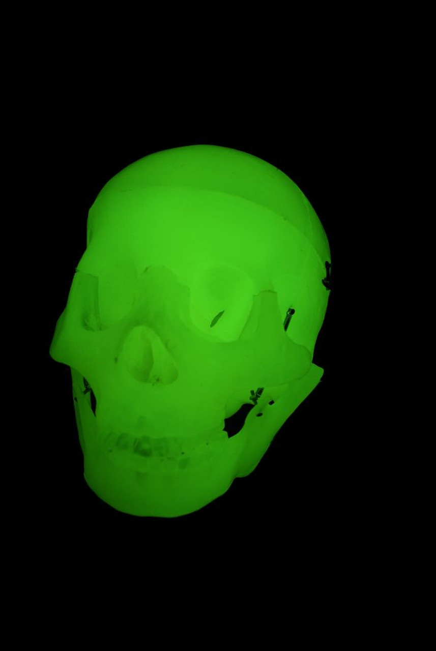 Assembled Glow-In-The-Dark Scary Terry Talking Skull - Cowlacious ...