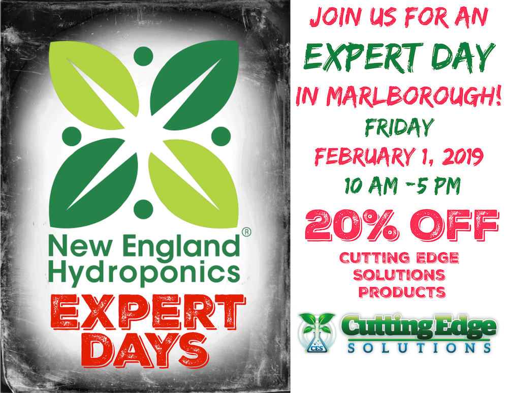 February 1 EXPERT DAY in Marlborough Featuring Cutting Edge Solutions