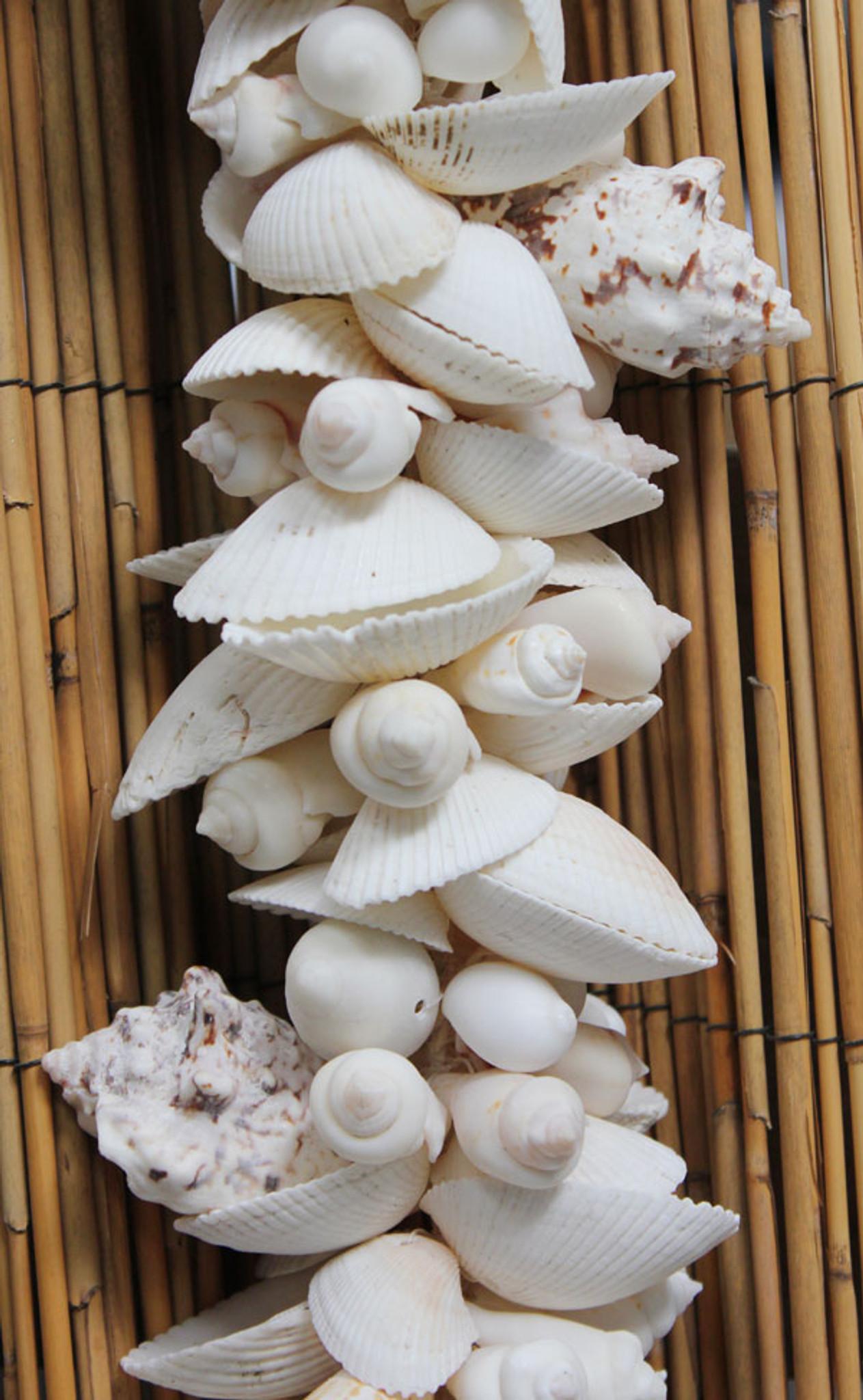 white shell cluster garland strand