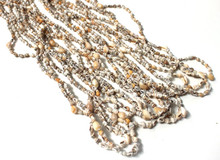 1 Dozen Nassa Shell Lei Necklaces