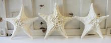 White Bahama Starfish