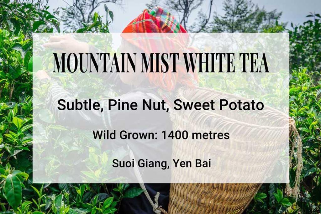 Mountain Mist Tea